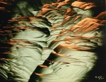 Gemscapes, by Anthony de Goutière