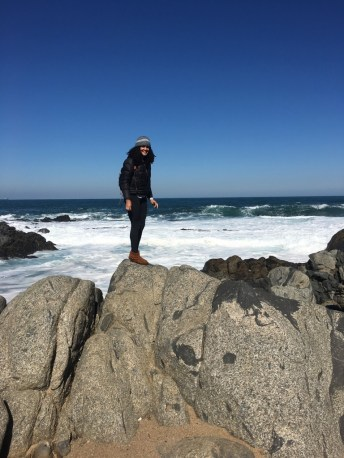 The rocks at Pablo Neruda's house were great for climbing