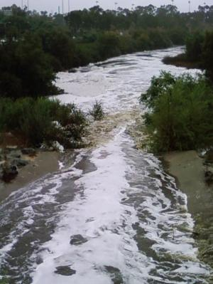 San Diego Creek after the rain
