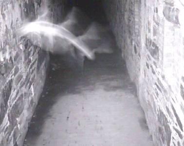 Fortress of Nightmares Fort Adams Newport Halloween