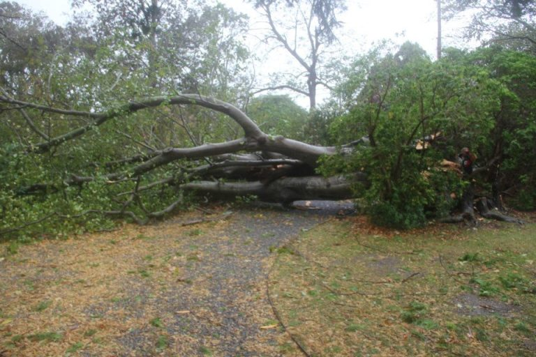 Hurricane Sandy Newport RI