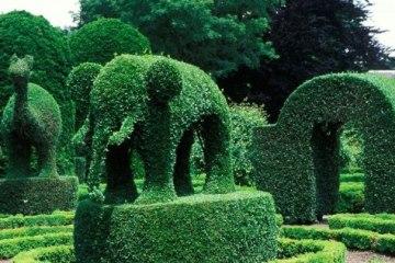 green animals portsmouth
