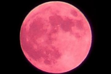 Strawberry Moon Newport RI