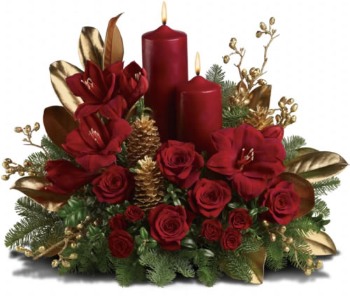 Red Candle Roses