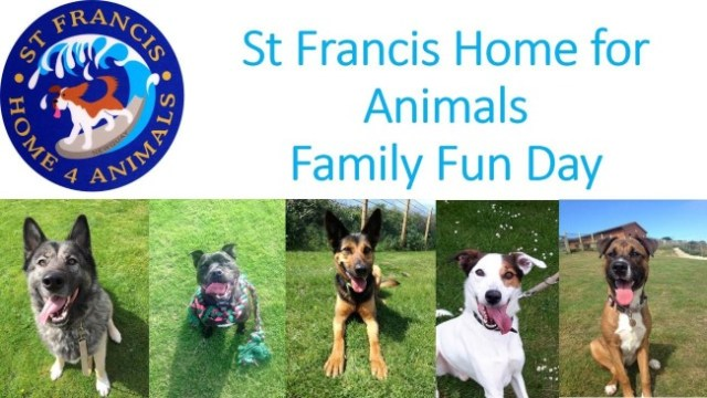 St Francis Home Animals Family Fun Day Dog Show