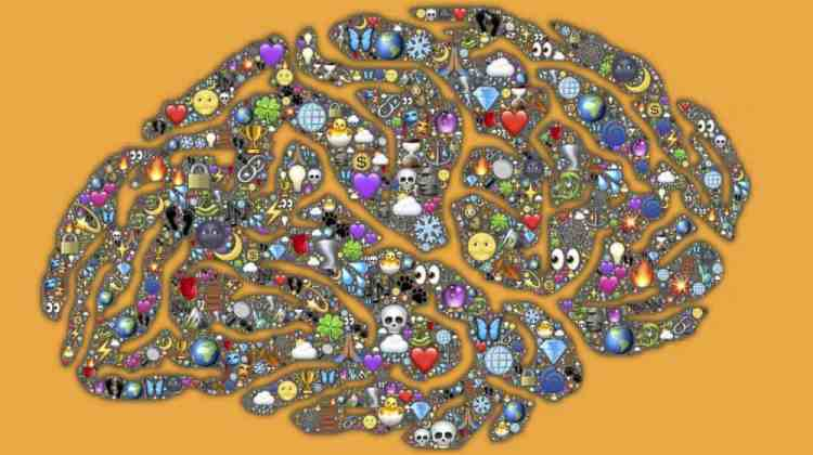 image of brain with jewels embedded