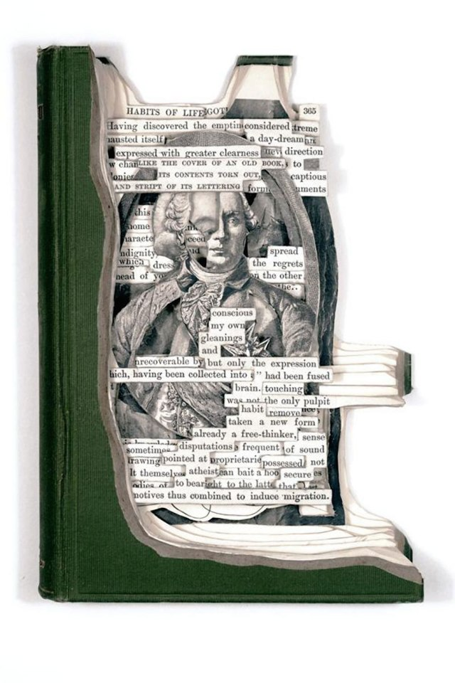 Superb-Portrait-Book-Sculptures-by-Brian-Dettmer-1