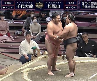 大相撲中継に映る謎の美女