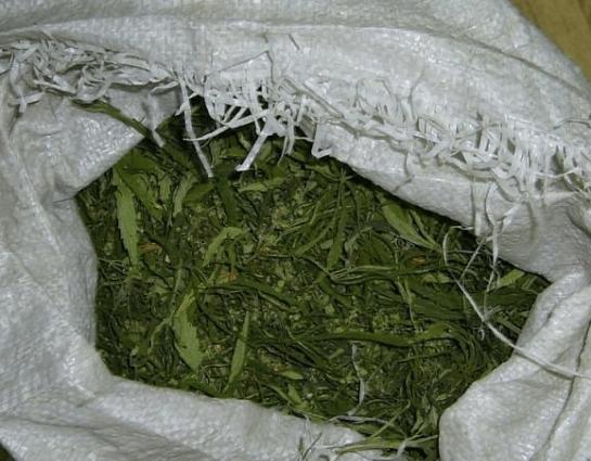 В Георгиевском городском округе мужчина хранил в домовладении более килограмма марихуаны