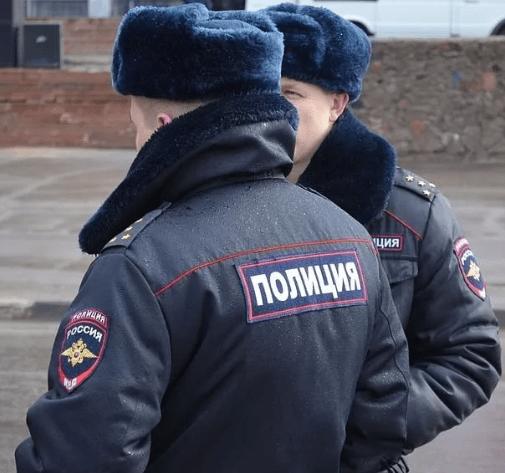 В Георгиевском городском округе сотрудники полиции установили подозреваемого в краже картин