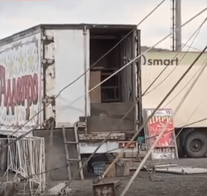 Зоозащитники ужаснулись условиями содержания животных в цирке Тимашевска