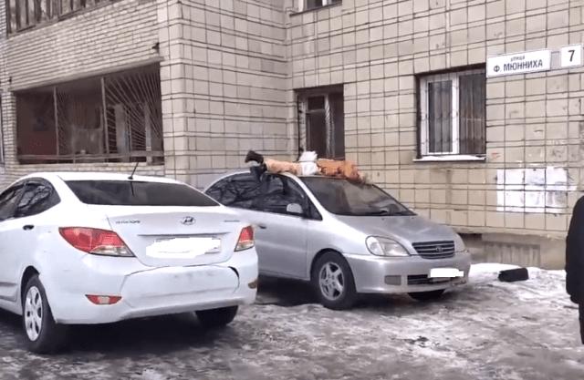 На автомобиль с высоты 6-го этажа выпала и разбилась женщина в Томске
