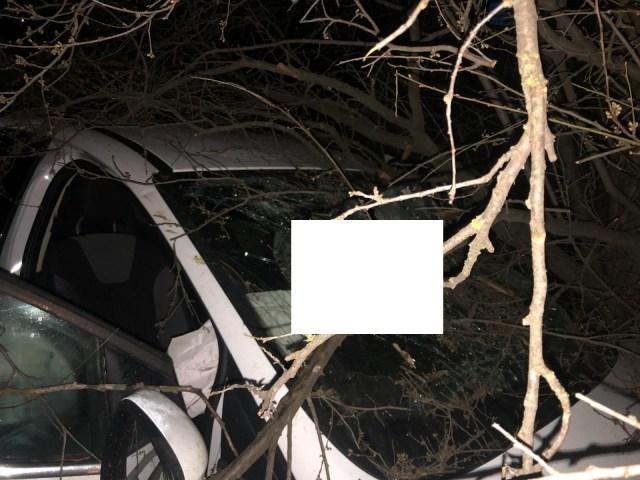 Мужчина скончался в смертельном ДТП под Новопавловском