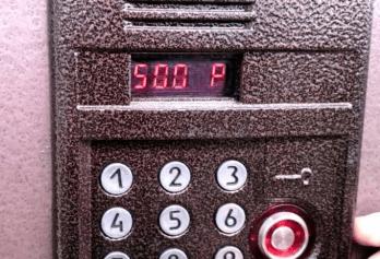 Девушку из Санкт-Петербурга, на карантине, оштрафовали за сломанный домофон