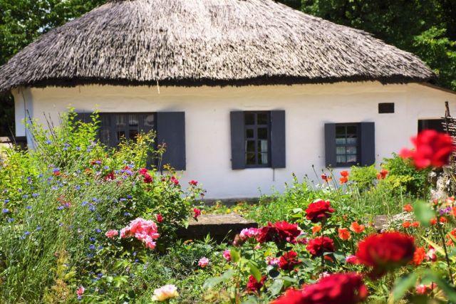 Музеи, библиотеки и зоопарки заработают на Ставрополье