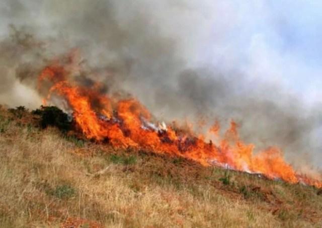 В Ставропольском крае из-за жары обьявили высокую пожароопасность