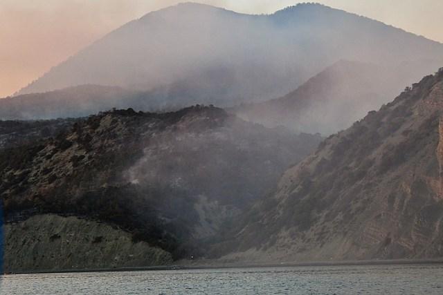 Непотушенный костер стал причиной крупного пожара в заповеднике под Анапой