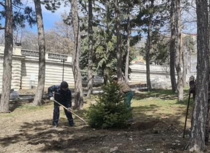 В Пятигорске приступили к озеленению сквера имени Льва Толстого