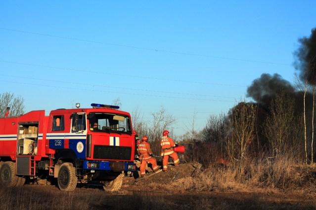 Пожары в лесах Ставропольского края предотвратят 1100 сотрудников и 400 единиц спецтехники