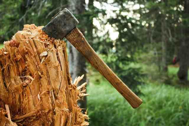Незаконную стройку обнаружили на месте сноса деревьев в Ставрополе
