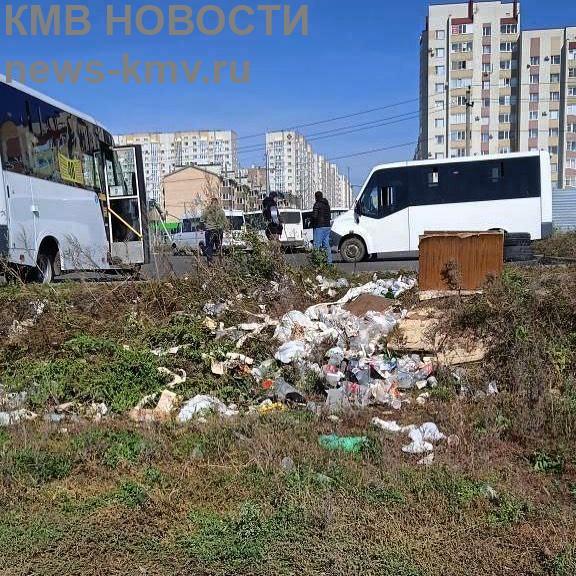 Жители Ставрополя пожаловались на мусорку возле маршрутной остановки