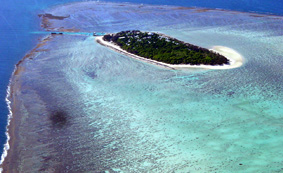 Heron Island in the Great Barrier Reef  Photo by Christian Wild