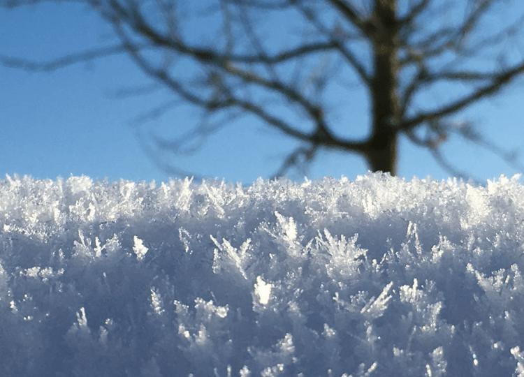 eisige Temperaturen (S. Thierbach)