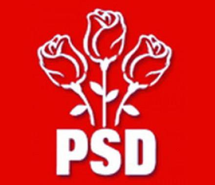 PSD Roman trimite comunicat de presă legat de Ziua României