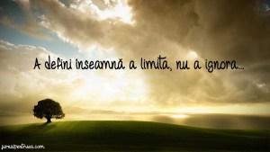 citat limita