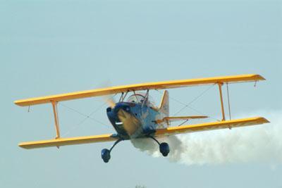 În Roman se va face dezinsecție cu ajutorul avioanelor speciale