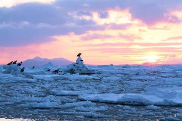131111【風景】北海道 オホーツク 流氷