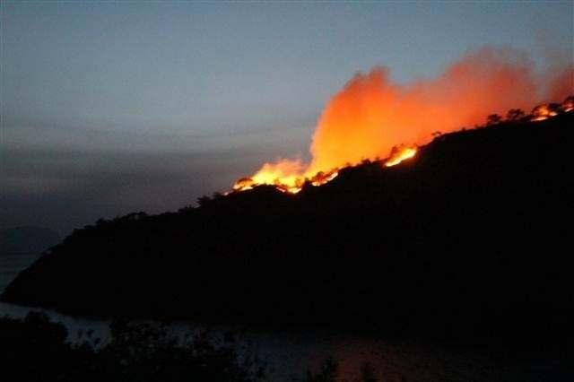 Крупный лесной пожар в Мармарисе