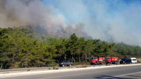 Погода становится причиной пожаров в Анталии