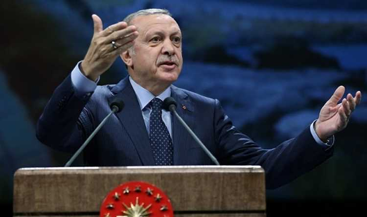 Эрдоган представил План действий в сфере прав человека