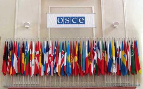 ОБСЕ: «Интерполу следует пересмотреть запросы Турции»