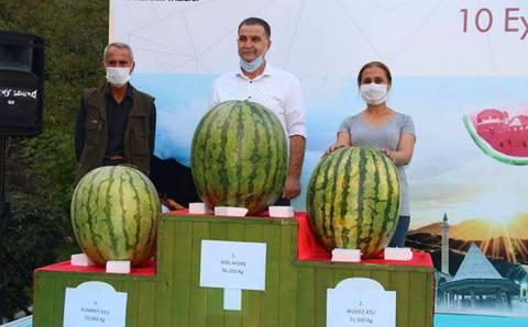 В Турции прошел конкурс самых больших арбузов
