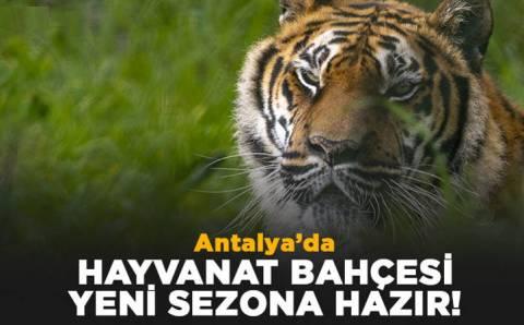Зоопарк Анталии ждет посетителей