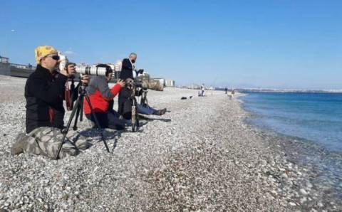 Фотографы оккупировали пляж в Анталье