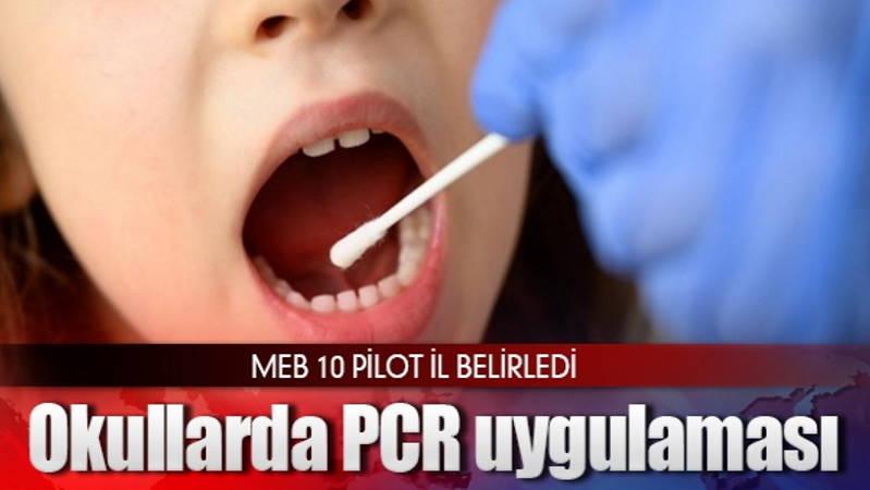 Минздрав Турции намерен проводить ПЦР-тесты школьникам