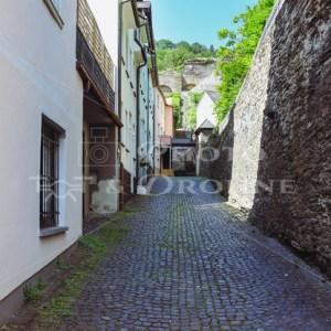 Stadtgarten Oberwesel-9583-2 - News vom Rhein