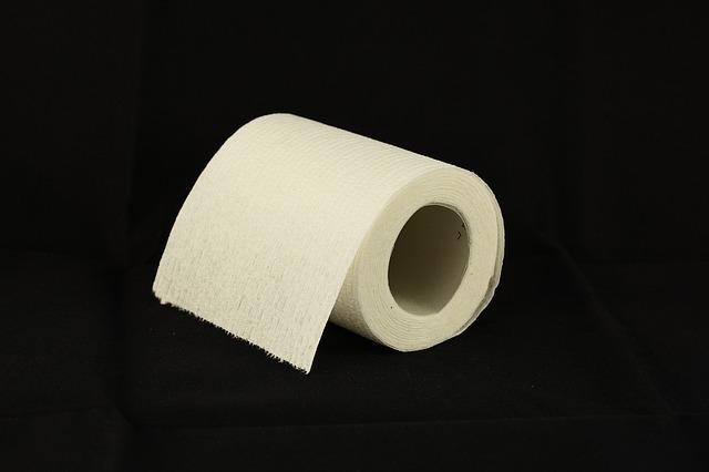toilet-paper-1338433_640