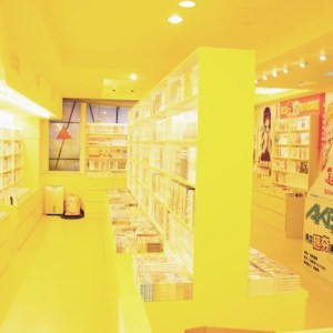 INDEX ACG 茵德可絲 動漫電玩卡牌精品專賣店