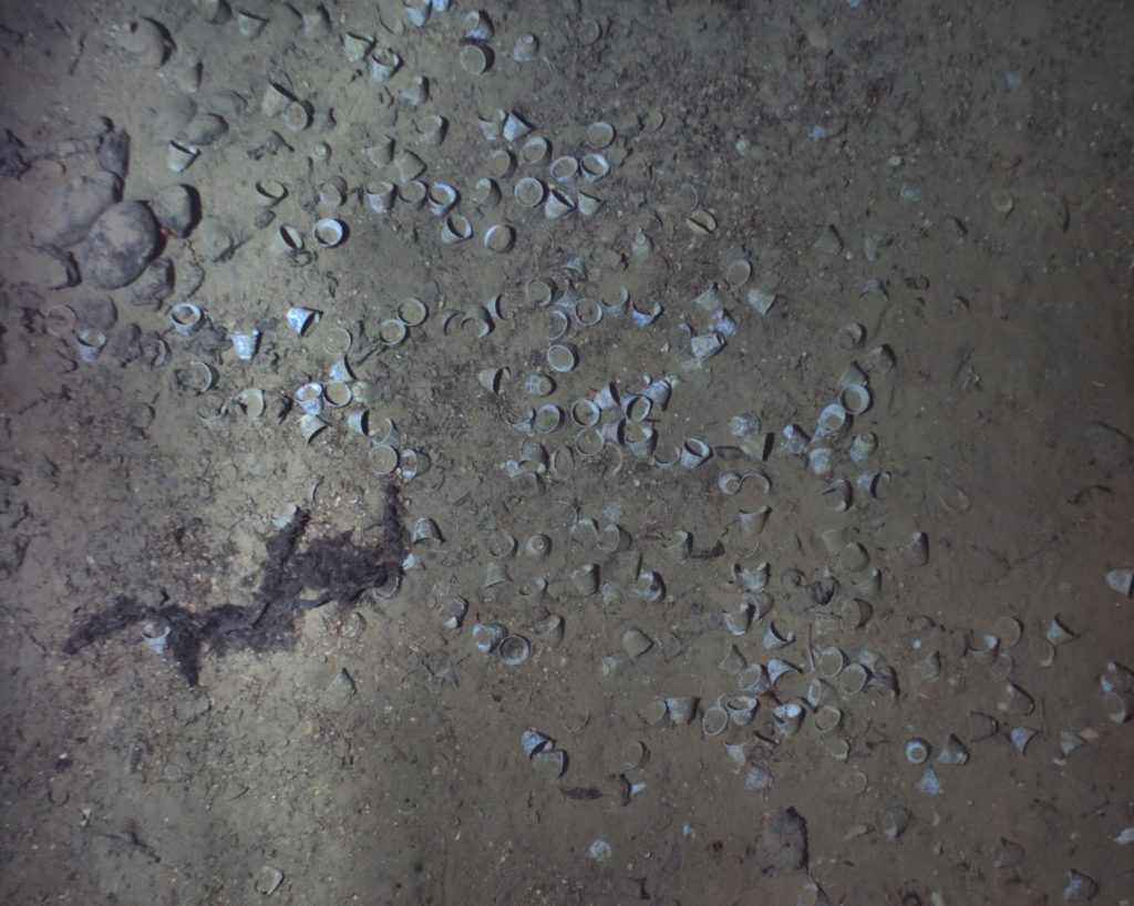 Teacups at the site of the San Jose shipwreck. Photo courtesy of REMUS image and the Woods Hole Oceanographic Institution.