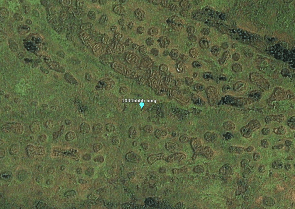 Archaeologist Richard Oslisly believes these formations are evidence of the terraced plantings of an ancient agrarian civilization in the Congo Basin . Image from Bing Maps