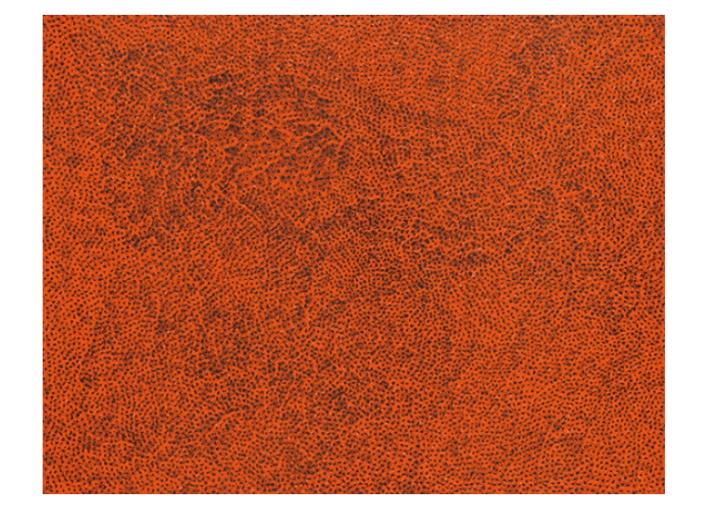 Yayoi Kusama,Infinity-Nets (KPEU), 2016. Courtesy of Seoul Auctions