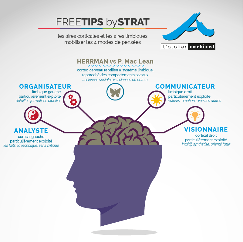 tips by L'atelier cortical