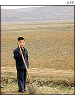 A North Korean boy on a collective farm