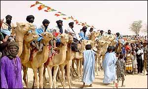 Camels in Timbuktu