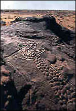 [ image: The rock carving is 9,000 years old (Picture courtesy of WMF)]
