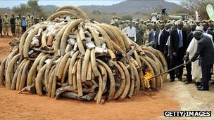 President Kibaki sets on a fire a stockpile of ivory